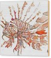 Sea Dude  Wood Print