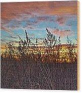 Sea Fields Wood Print