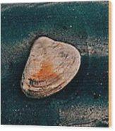 Sea Food Wood Print