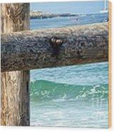 Sea Gate Wood Print