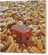 Sea Glass And Shells 3 10/13 Wood Print