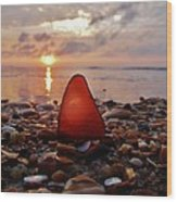 Sea Glass Sunrise And Shells 9 10/18 Wood Print