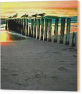 Sea Gulls On Pilings At Sunset Wood Print