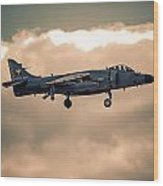 Sea Harrier Silhouette Wood Print