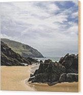 Sea Head Beach Wood Print