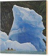 Sea Kayaking With Icebergs Tracy Arm Wood Print