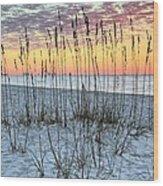 Sea Oat Sunrise Wood Print