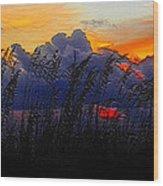 Sea Oat Sunset Wood Print