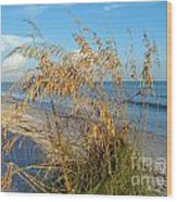 Sea Oats 2 Wood Print