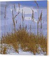 Sea Oats Agaist A Blue Sky Wood Print