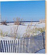 Sea Oats And Fence Along White Sand Wood Print