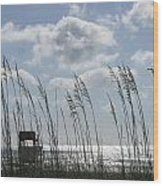 Sea Oats And Safety Wood Print