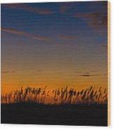 Sea Oats At Twilight Wood Print