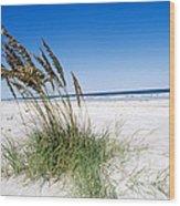 Sea Oats Wood Print