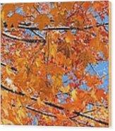 Sea Of Orange And Blue Wood Print