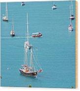 Sea Of Sailboats Wood Print