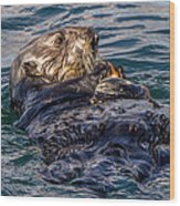Sea Otter With Clam Wood Print