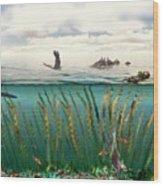 Sea Otters And Kelp Ecosystem Wood Print