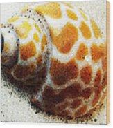 Sea Shell Beach Painting Art Wood Print
