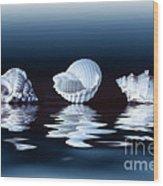 Sea Shells On Water Wood Print