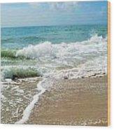 Seashore At Vero Beach Wood Print