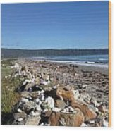 Sea Shore With Rocks Wood Print