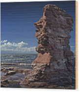 Sea Stack At North Cape On Prince Edward Island Wood Print