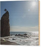 Single Sea Stack In Olympic National Park Wood Print