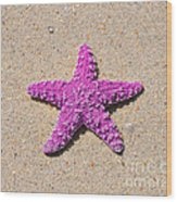 Sea Star - Pink Wood Print