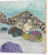 Sea Turtle Hello Wood Print