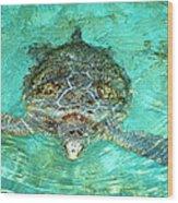 Single Sea Turtle Swimming Through The Water Wood Print