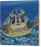 Sea Turtle Wood Print by Shirl Theis