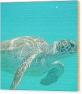 Sea Turtle Time Wood Print