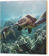 Sea Turtles Wood Print