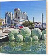 Sea Urchin Sculpture Wellington New Zealand Wood Print