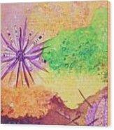 Sea Urchins - Abstract Wood Print