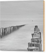 Sea Watcher Wood Print