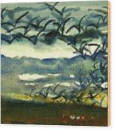 Seabirds Rising From The Marsh 2-27-15  Wood Print