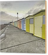 Seaford Beach  Wood Print