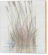 Seagrass 1 Wood Print