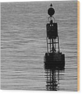 Seagull And Buoy Wood Print