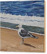 Seagull At The Seashore Wood Print