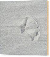 Seagull Footprint On The Sand Wood Print