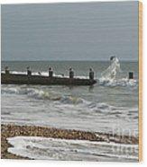 Seagull Groyne Wood Print