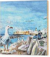 Seagull In Essaouira In Morocco Wood Print