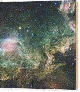 Seagull Nebula Wood Print