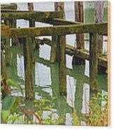Seagull Nesting Dock Wood Print