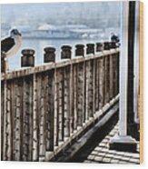 Seagull On The Boardwalk Wood Print