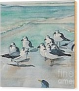 Seagull Party Wood Print