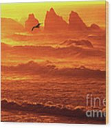 Seagull Soaring Over The Surf At Sunset Oregon Coast Wood Print